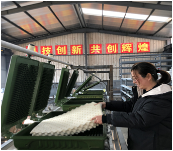 Natural latex pillow automatic production line equipment